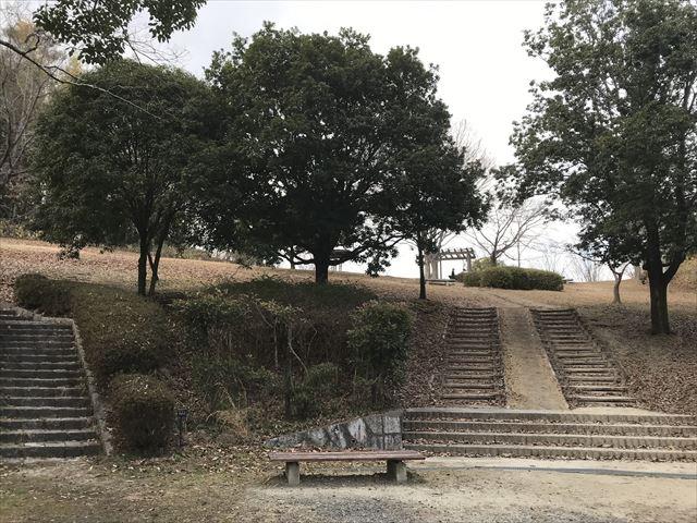 大渕池公園西地区の広大な丘