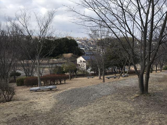 大渕池公園西地区、丘からの眺め