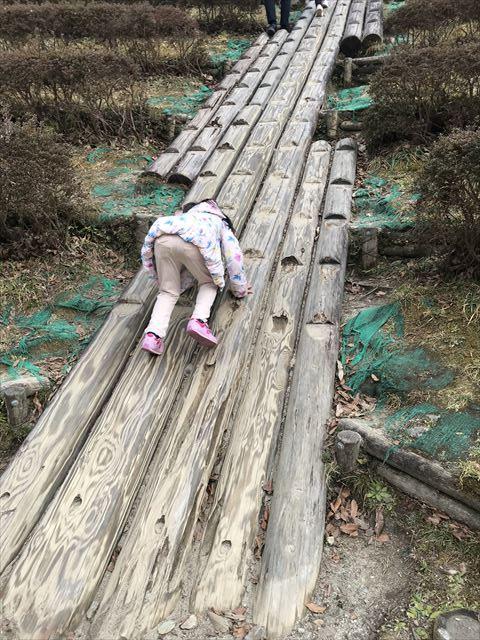 大渕池公園西地区のロング滑り台横の丸太の階段