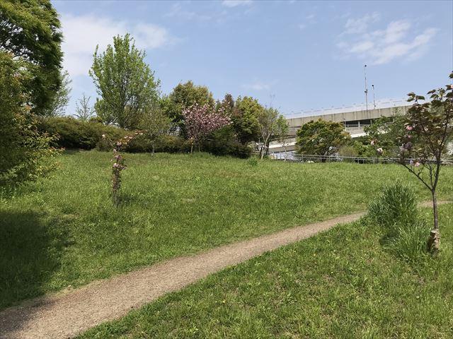 城北公園、淀川に行ける丘
