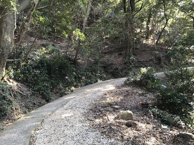 洲本城(三熊山)登山中の道