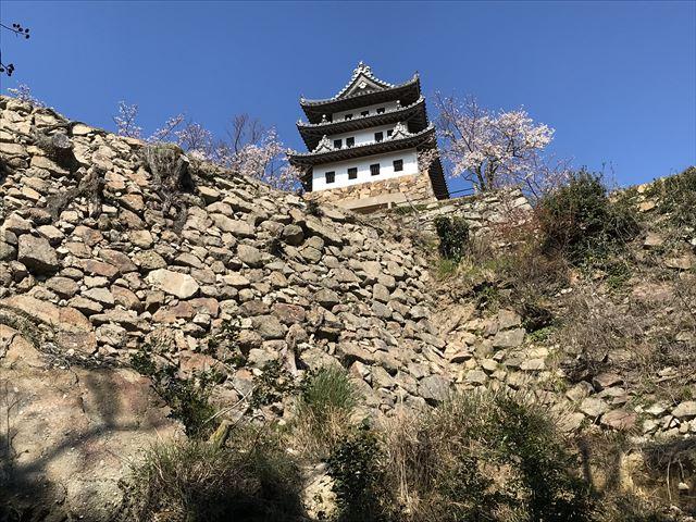 登山途中に洲本城跡が見える