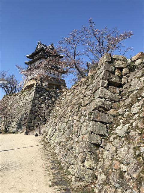 洲本城と石垣