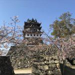 洲本城(三熊山)山頂と桜