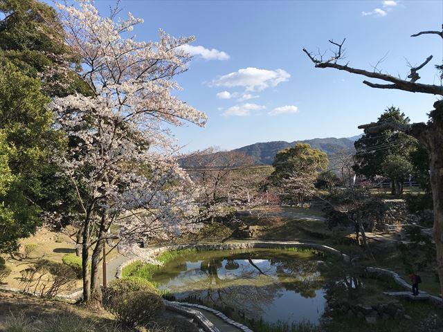 洲本城(三熊山)日月池
