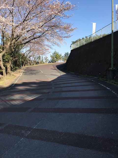 洲本城(三熊山)に車で向かう時の道