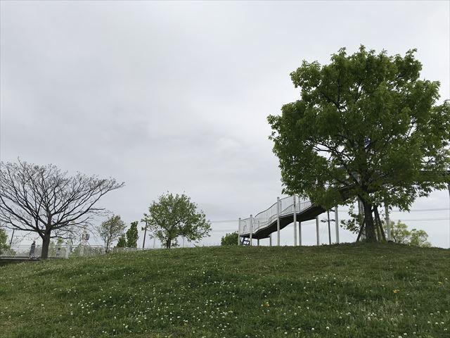 「水無瀬川緑地公園」芝生広場とローラー滑り台