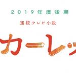 NHK朝ドラ「スカーレット」ログ