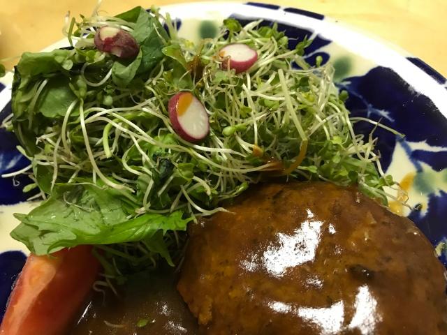 栽培したラディッシュを野菜に添えて食べる