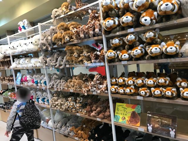 てんしばイーナの天王寺動物園ミュージアムショップ「ズークル(ZOOQLE)」店内の様子