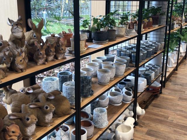 てんしばイーナの「ガーデナーズ天王寺(Gardener's Tennouji)」店内の様子