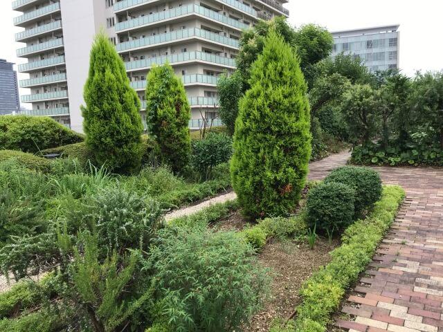 「OCAT屋上ガーデン」の緑