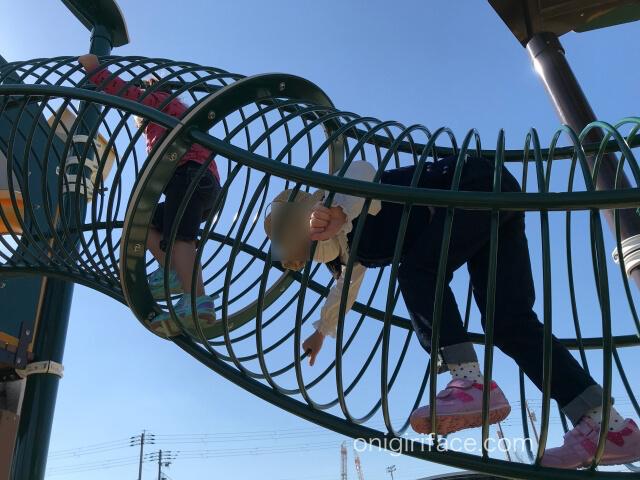 大枝公園の複合遊具「大枝のとりで」輪っかの中を上る