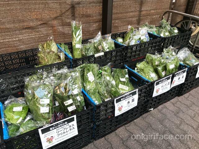 「ビオラル」入口の地元産の野菜販売