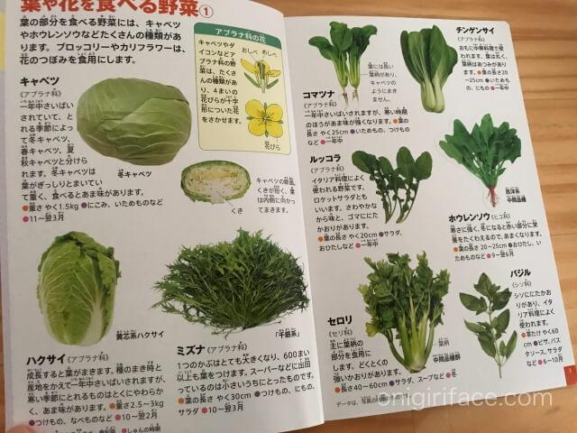 ハッピーセット図鑑「果物と果実」葉や花を食べる野菜