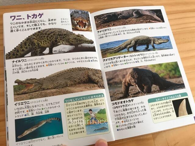「ハッピーセット」の図鑑「危険生物(海外の動物・ヘビ)」ワニとトカゲのページ