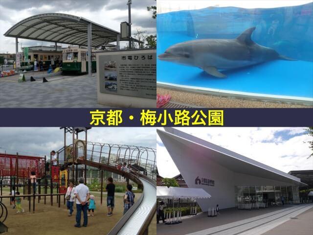 梅小路公園(京都水族館・市電ひろば・すざくゆめ広場・京都鉄道博物館)
